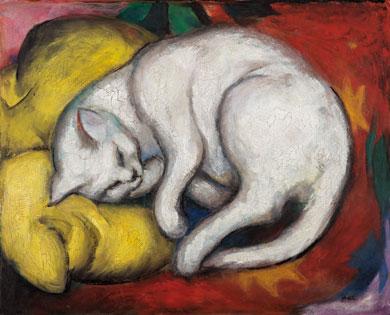 die weiße Katze