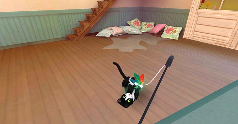 Cathotel-Beispiel-Spielen