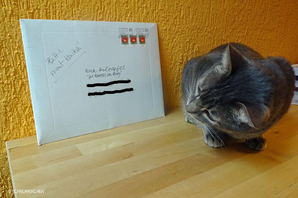 Ramses mit Brief von Ruby