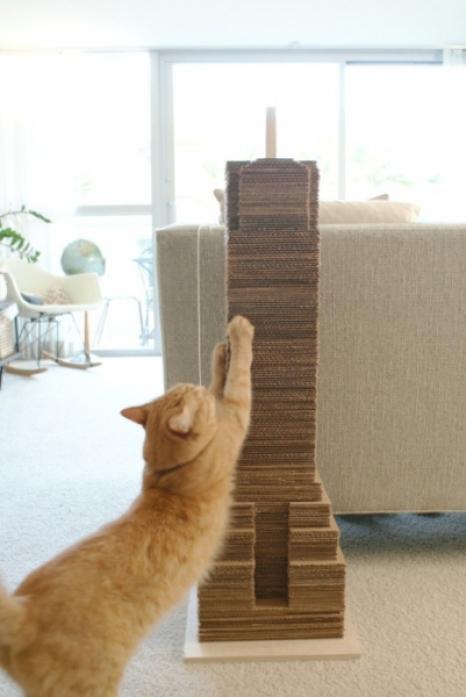 moderncat_catscraper