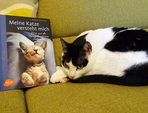 Buchvorstellung – Meine Katze versteht mich