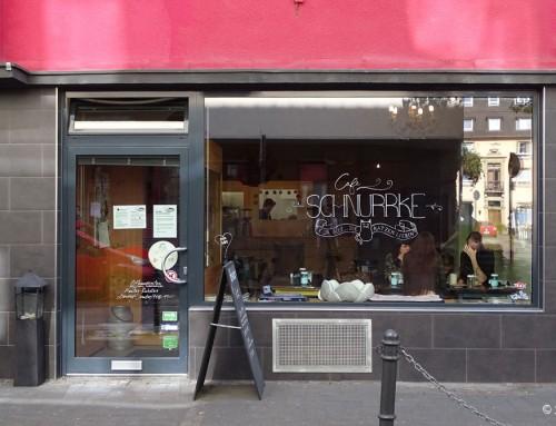 Unser Besuch im Katzencafé Schnurrke in Köln