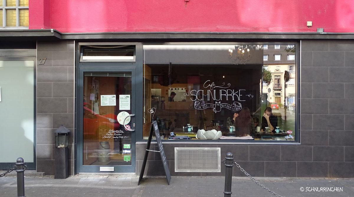 Katzencafe in Köln